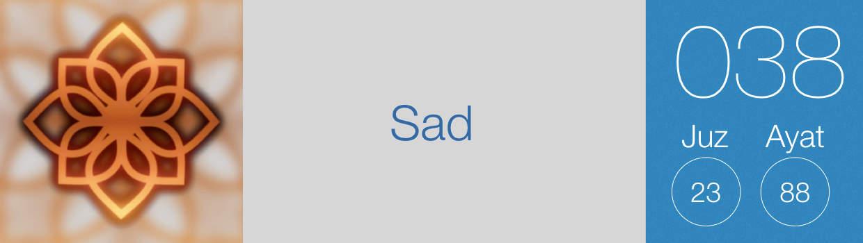 038-Sad